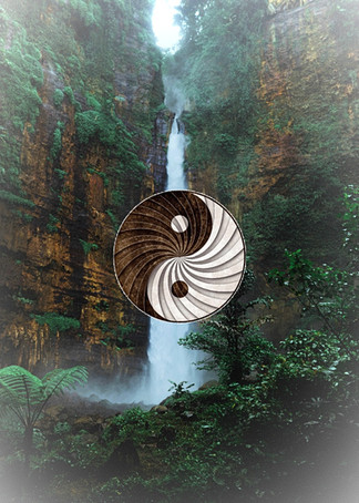 The Magic of Yin – What We've Been Missing