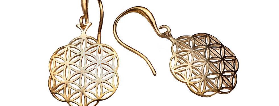 עגילי זהב 14 קראט נתלים פרח החיים