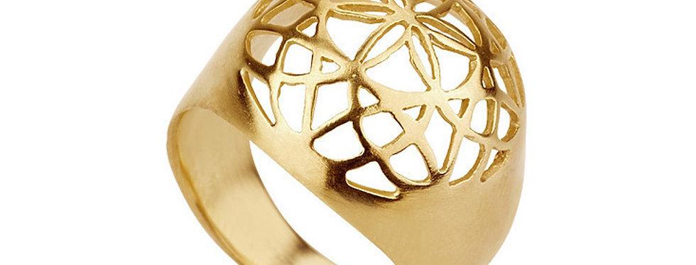 טבעת ניצוץ החיים