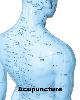 acupuncture+diagram.jpg