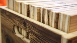 Head-Holz-(3-von-21).jpg