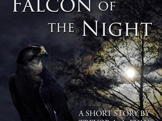 Falcon of the Night - A Short Story