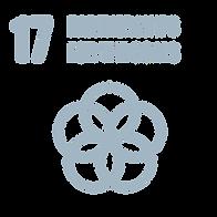SDG_Icons_Inverted_Transparent_WEB-17_ed