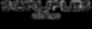 logo trans background.png