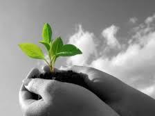 Cultivez l'espérance avec la sophrologie