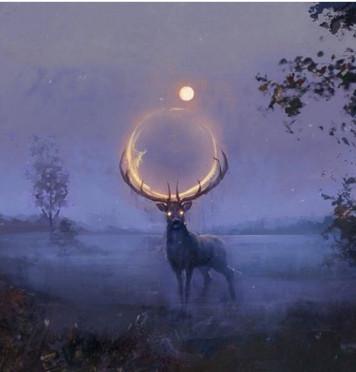 Sophrologie et la pleine lune du 12/12/19