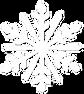 Snowflake YMM