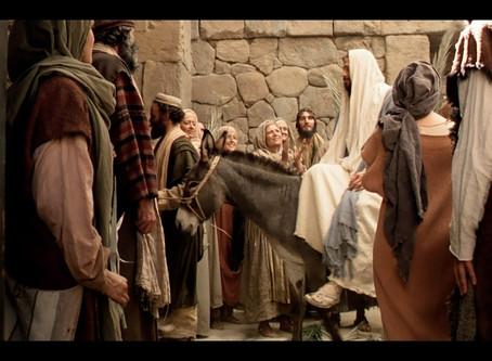 22 January 一月| John 约12:1-50|