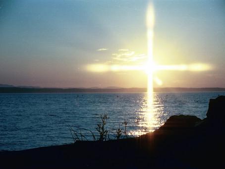18 January 一月| John 约8:1-59 |