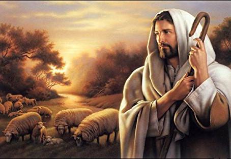 20 January 一月| John 约10:1-42|