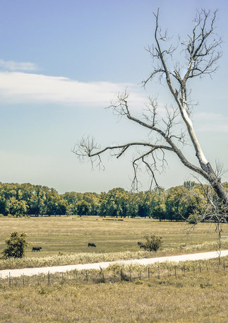 Trip to Durant 052019 (1 of 1)-28.jpg