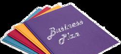 Healthcare Business Plans