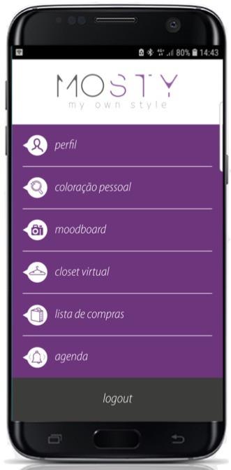 aplicativo para consultoras de imagem