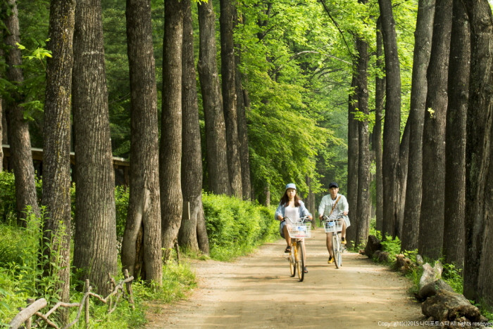 Nami island romantic tour