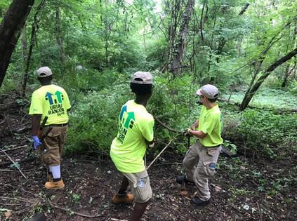 Swope Park Habitat Restoration