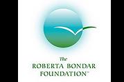 therobertabondarfoundation.org