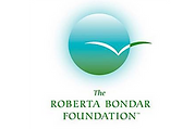 therobertabondarfoundation.org