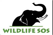 Wildlife SOS