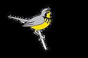 birdscanada.org