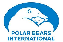 Polar bear cams and research