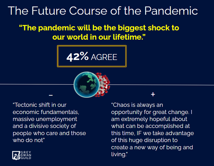 The future course of the pandemic