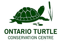 Ontario Turtle Conservation Centre