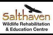 salthaven.org