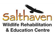 Salthaven Wildlife Rehabilitation Centre