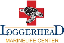 Loggerhead Marinelife Centre