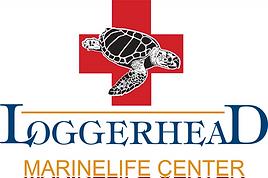 Sea turtle veterinary hospital