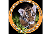 bearcreeksanctuary.com