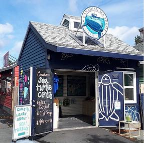 The Canadian Sea Turtle Centre