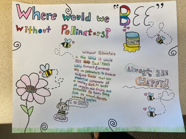 Conservation District of Iowa Poster Contest