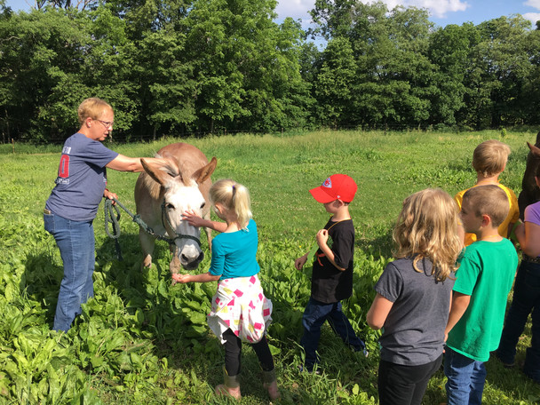 Arts & AgriCULTURE Day Camps
