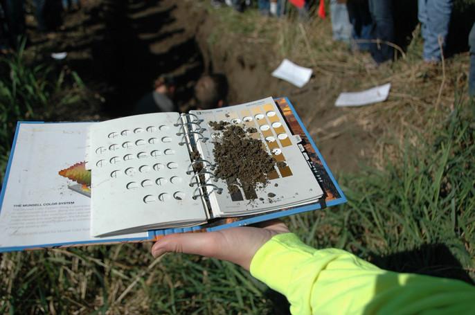 Soil Judging Pits