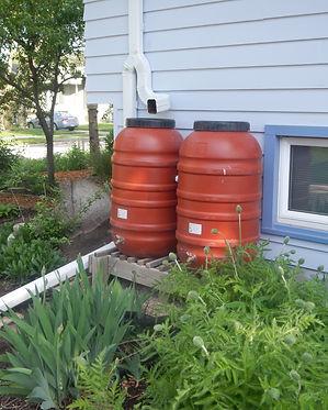 Rain Barrels.jpg