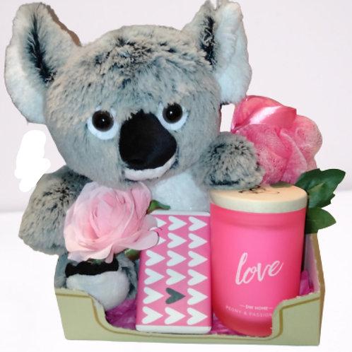 #102 Koala love