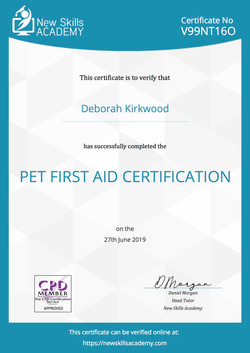 Pet First Aid Certification