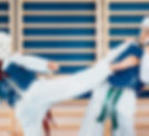 Tae Kwan Do Children Training