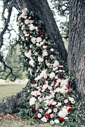Climbing floral