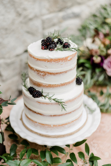 Naked cake with berry elements