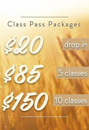 classPass3.jpg