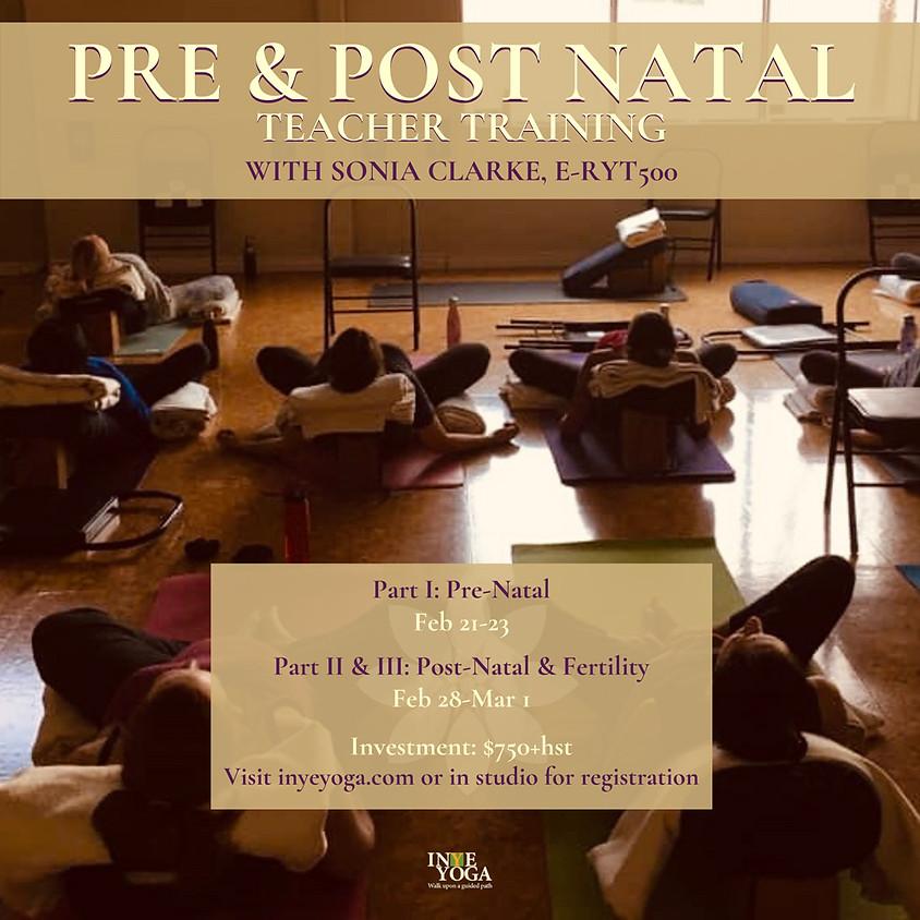 34 hrs PRE & POST NATAL TEACHER TRAINING