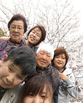 美和の河津桜の花見