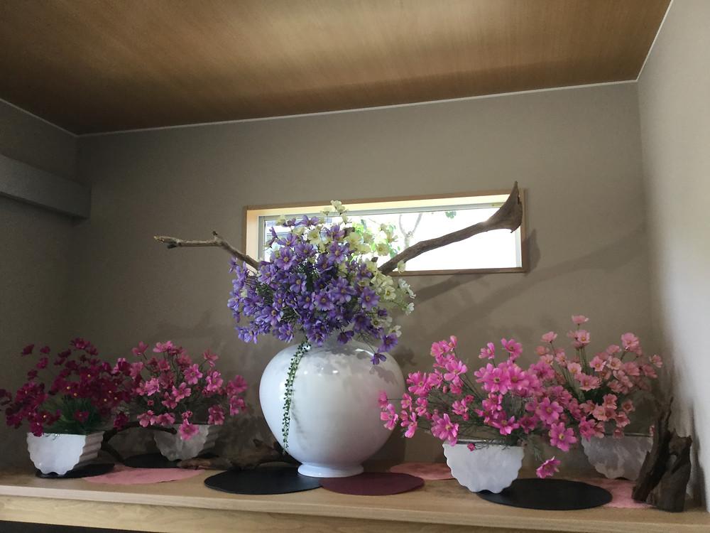 寿デイサービスでは毎月季節に合った玄関のディスプレイを変えています。立秋を迎えてコスモスを飾りました。