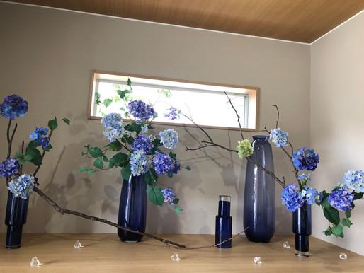 6月玄関ディスプレイ  紫陽花