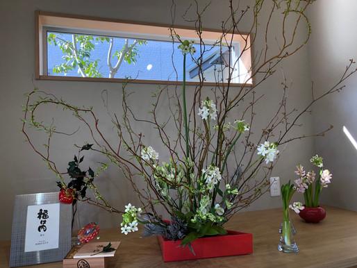 エントランス 2月の花