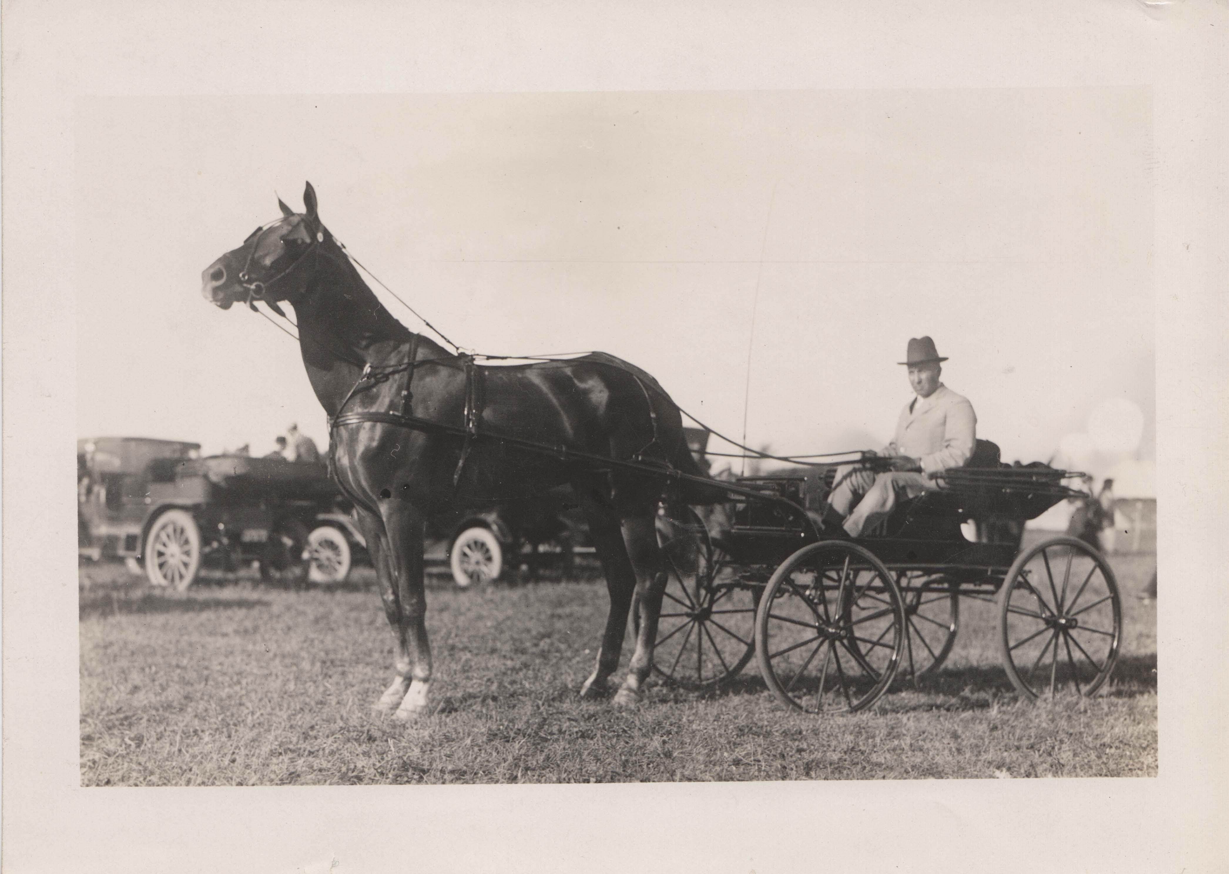 0202 Man in Dark Horse Carriage