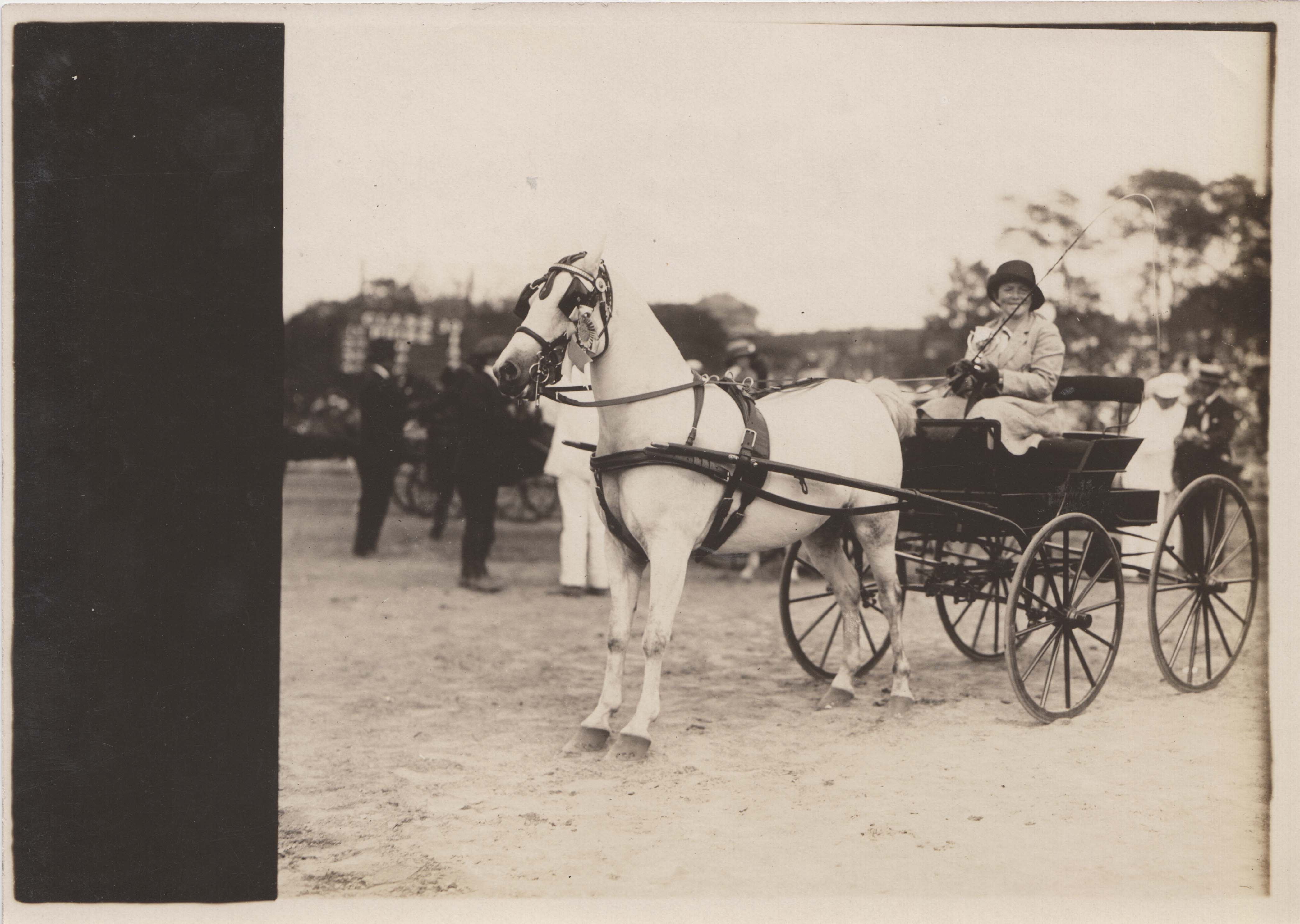 0201 woman on white Horse carriage