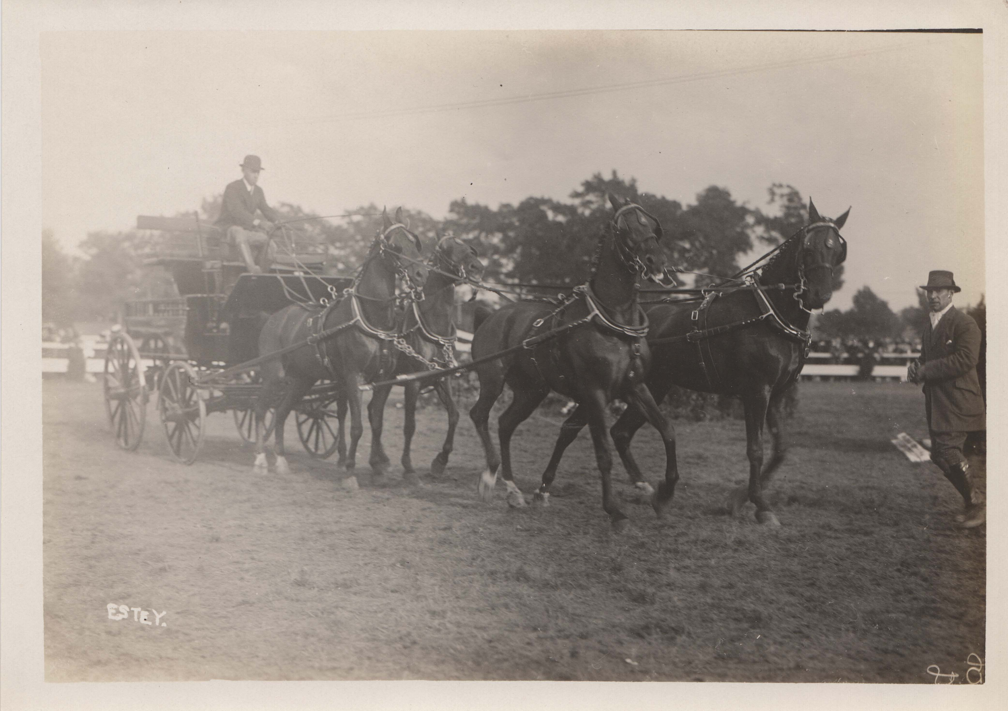0192 Horse Drawn Carriage